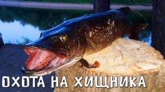 Хищники не дают нам покоя. Рыбалка с казанки на красивой реке. Заехали к отшельнику.