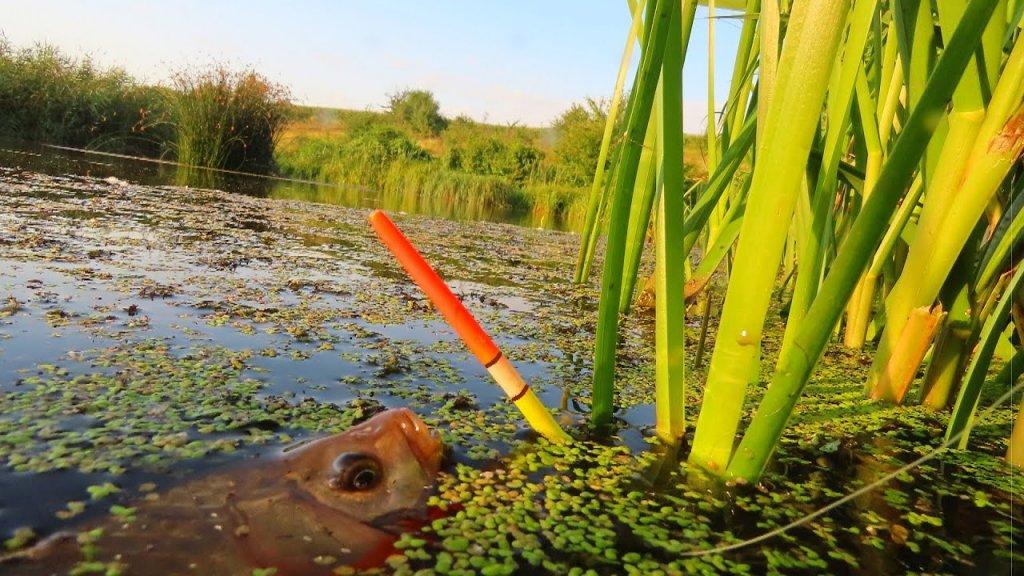 Идеальный поплавок своими руками из гусиного пера для рыбалки на карася