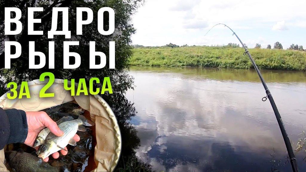 Ловля фидером на реке, нашли самое рыбное место на Свислочи