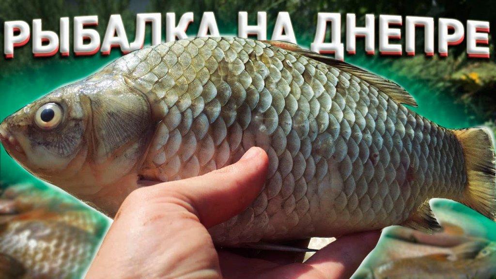 Рыбалка в запорожье на каховском водохранилище 🔥рыбалка с ночевкой на днепре ✨