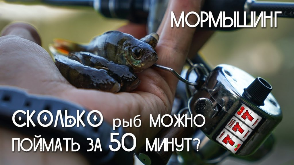 Мормышинг  Сколько рыб можно поймать за 50 минут?