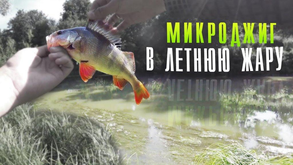 МИКРОДЖИГ, ловля окуня ЛЕТОМ на реке