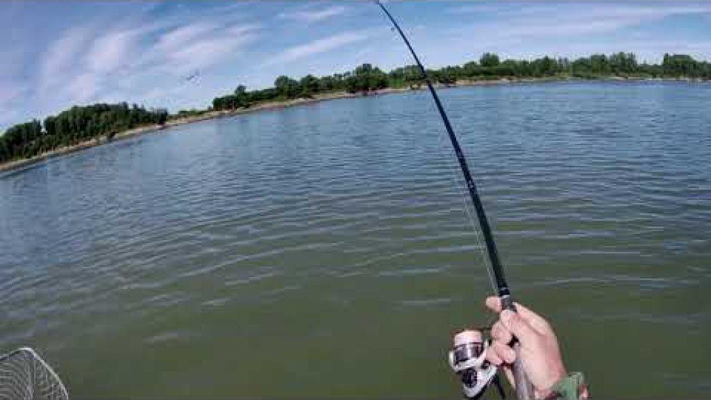 Рыбалка.холодно.Видео отчёт 15.07.2020