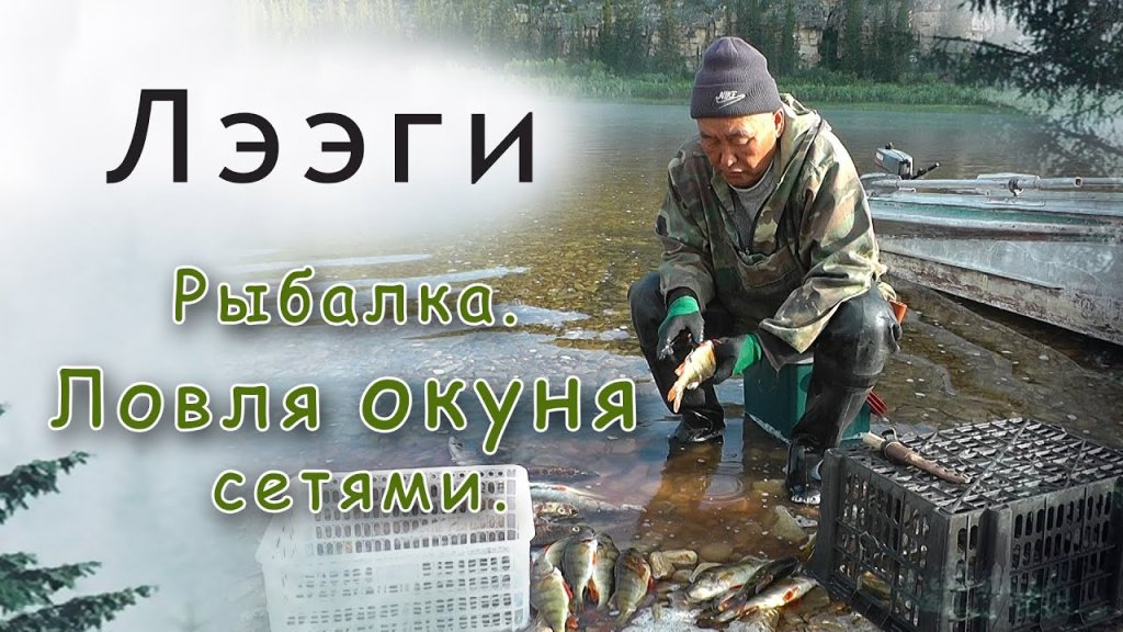 На рыбалке в Якутии. Ловля окуня сетями. Как правильно разделывать рыбу.