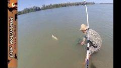 Рыбалка на реке Или. Ловля белого амура на камыш.3-5 июля 2020г.