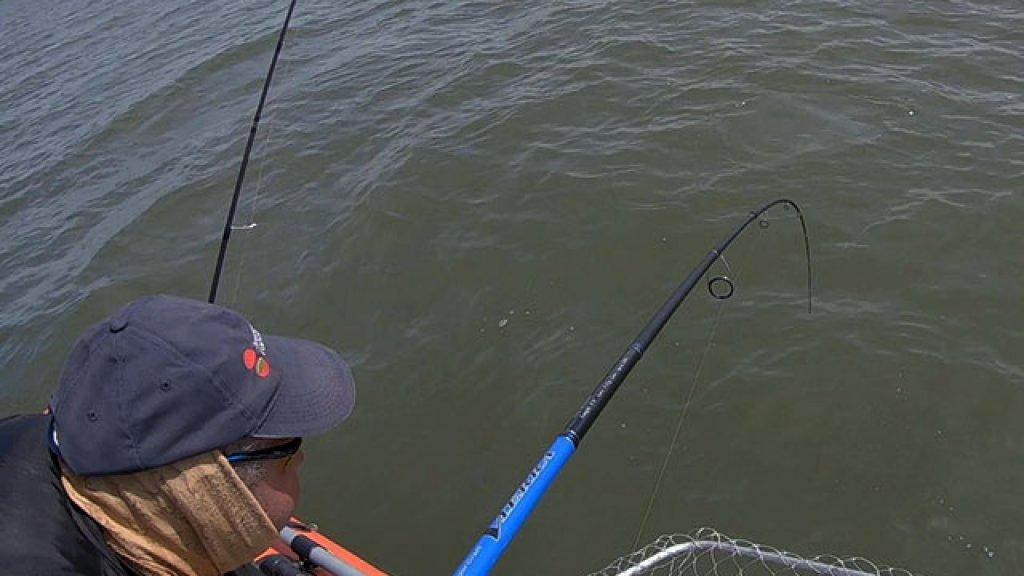 Джиг с мухой - трудовая рыбалка сезона. Монтаж оснастки