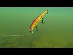 Как щуки атакуют воблеры под водой. Полный фильм