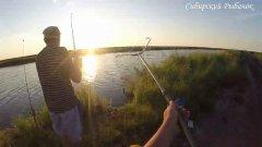 Рыбалка с ночёвкой на СОСКИ на реке Чулым. Сибирь 2020!