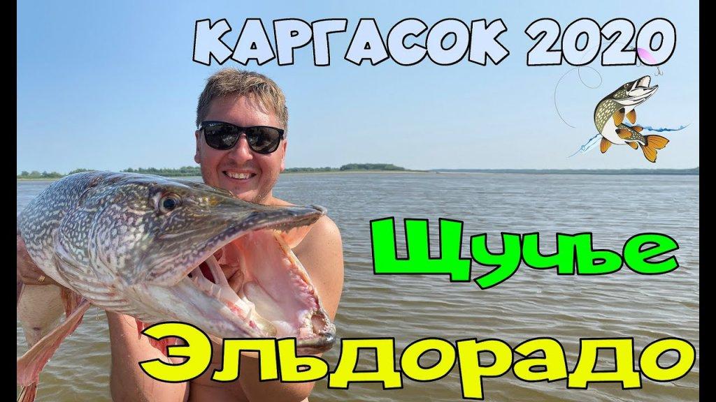 Каргасок 2020 | Рыбалка | Щука 10 200