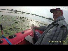 Ловля карася с лодки в кувшинках на болоте