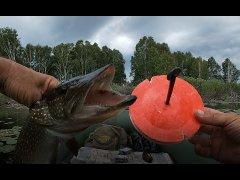 Ловля ЩУКИ на кружки. Супер СНАСТЬ!!! Щука МОНСТР рвет леску! Рыбалка на кружки!  Мой первый опыт.