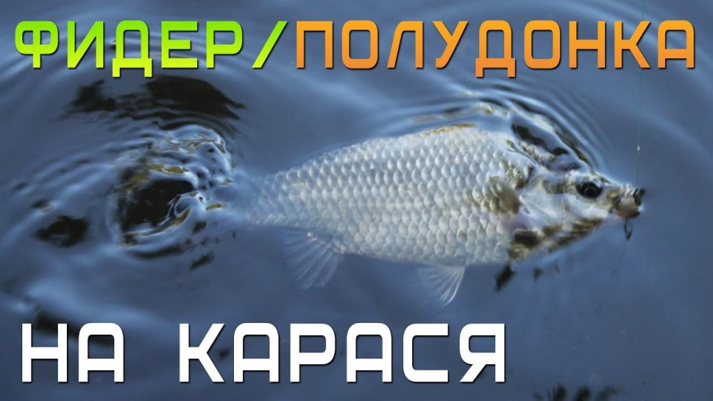 Фидер и полудонка на карася / ловля на течении с поплавком и Иваном Мазовка