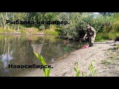 Рыбалка на фидер в Новосибирске. Шикарный клёв !