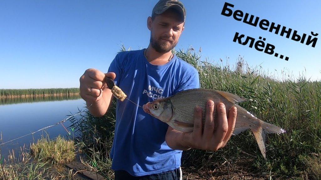 Рыбалка/Ловля на донку-крокодил.Бешенный утренний клёв карася.Долгожданный лещ.Отдых на речке.#2