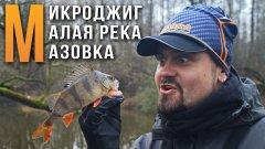 МИКРОДЖИГ, ловля пассивной рыбы на малой реке