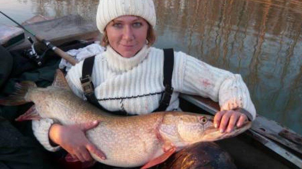 Трофейная рыбалка на Оби поздней осенью.