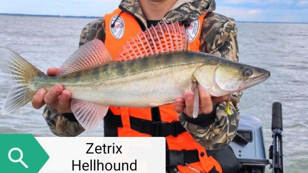 Zetrix HellHound HHS-792XH шаг к трофейной рыбалке или с чего познать тяжелый джиг.
