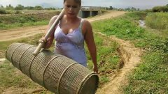 Woman Find fish using traditional trap in Summer-traditional fishing