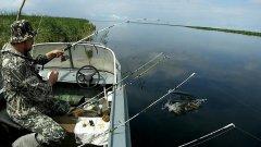 14 кг за 4 часа. Рыбалка с лодки на спиннинги и удочку. Ловля карася, сазана, язя, окуня. ENG SUB