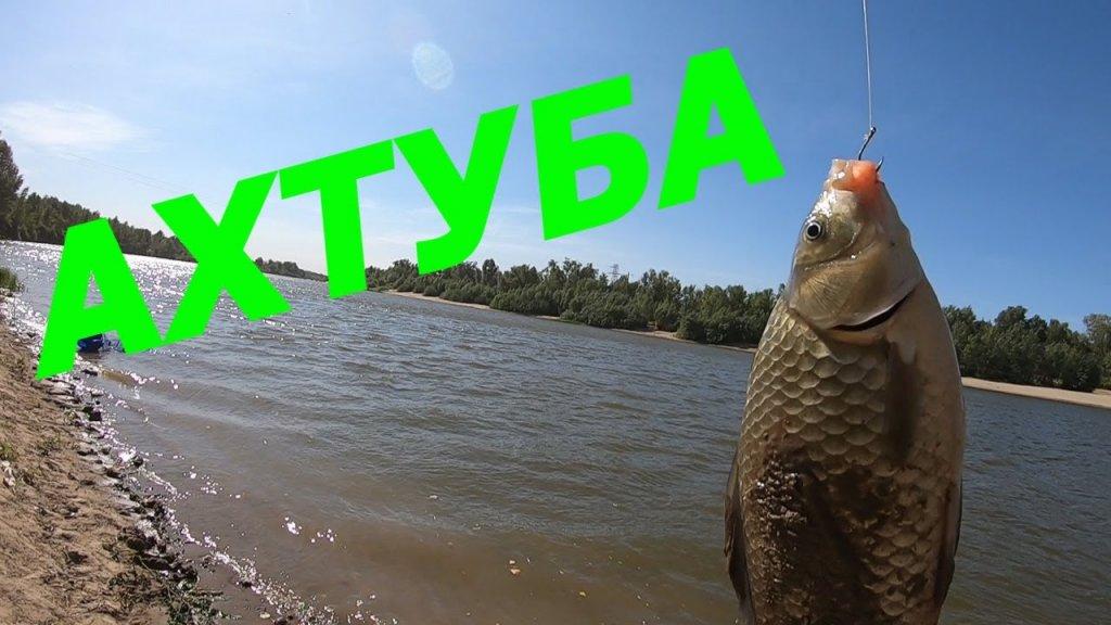 Рыбалка на Ахтубе/Отличный клев /Природа/ Рыбалка 2020г