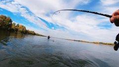 Пришлось звать подмогу! Осеняя рыбалка 2020