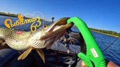 Пять фактов о ловли щуки в осенний период, факты о рыбалке на спиннинг осенью