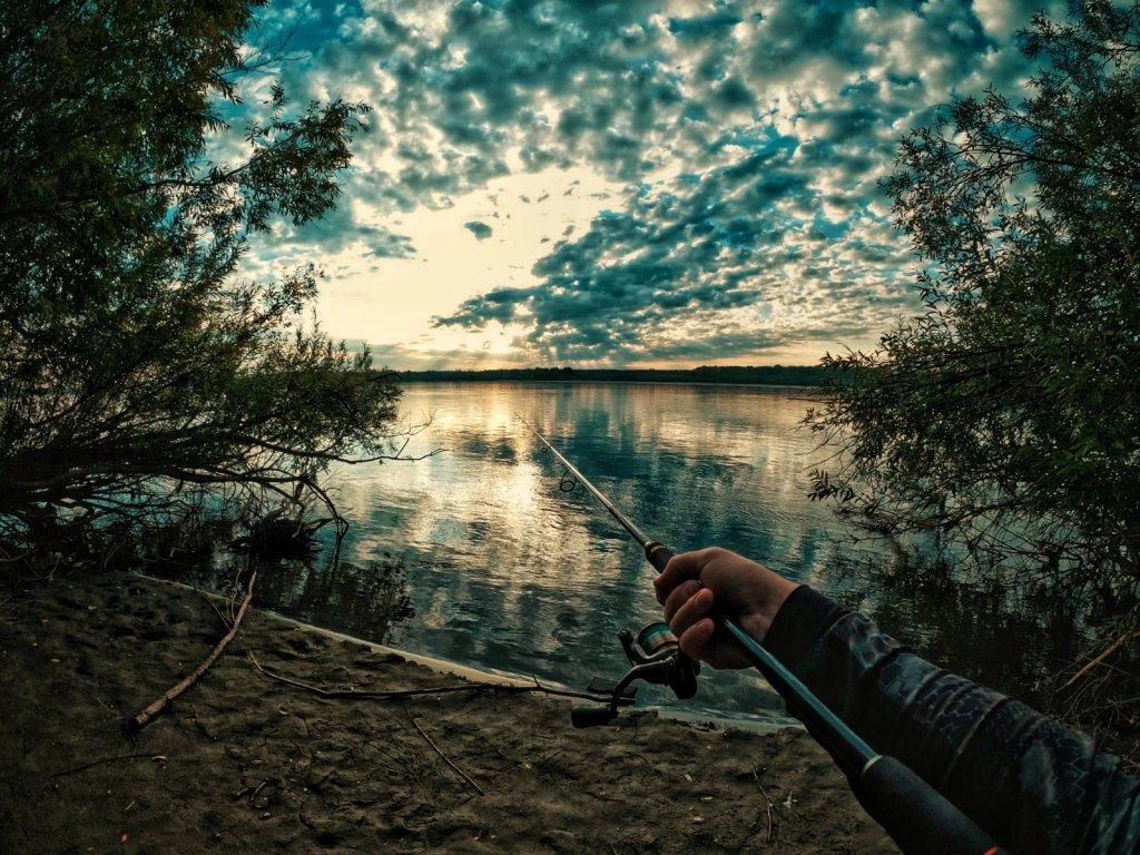 Утро на реке. В поисках щуки