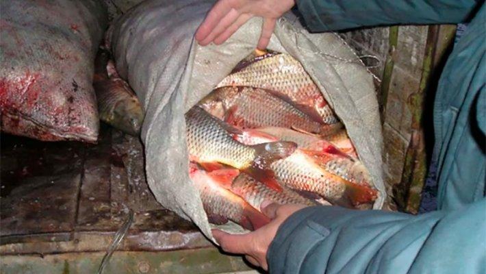 Порыбачил в Оби. Новосибирский рыбак получил почти миллион рублей штрафа