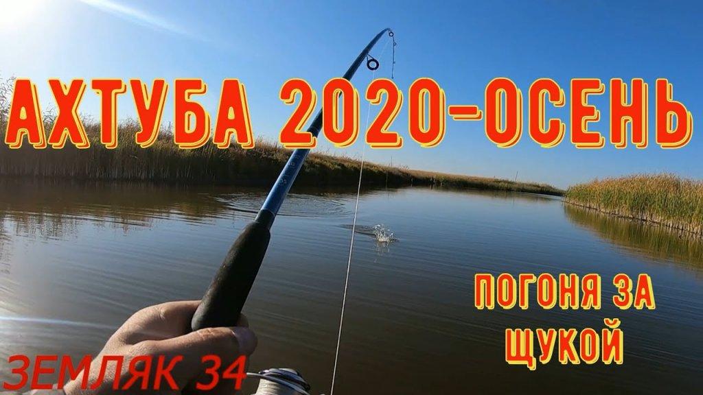 Погоня за щукой в Ахтубинской пойме. Рыбалка 2020-осень. Астрахань.