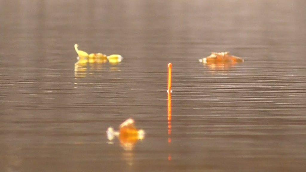 Рыбалка на карася осенью 2020. Много рыбы на удочку.