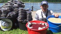 Эксперимент: 450 пачек червя - закормили водоем