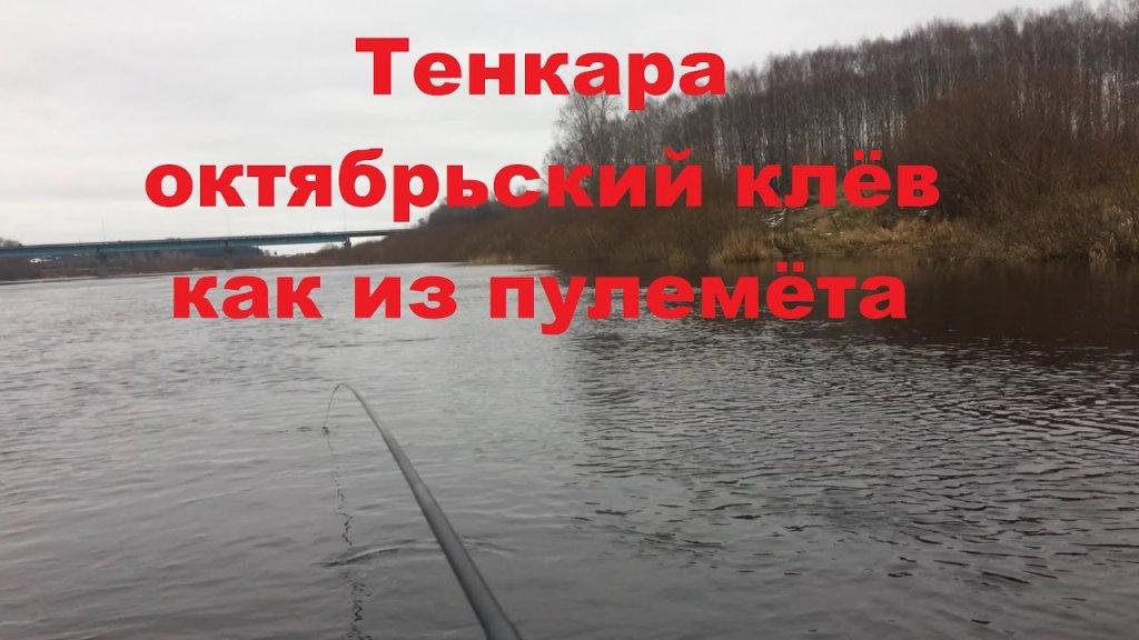 Тенкара октябрьский клев как из пулемета