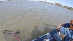 Осенняя рыбалка на ХИЩНИКА. Нашли ЩУКУ среди стаи леща. Сузун часть 2