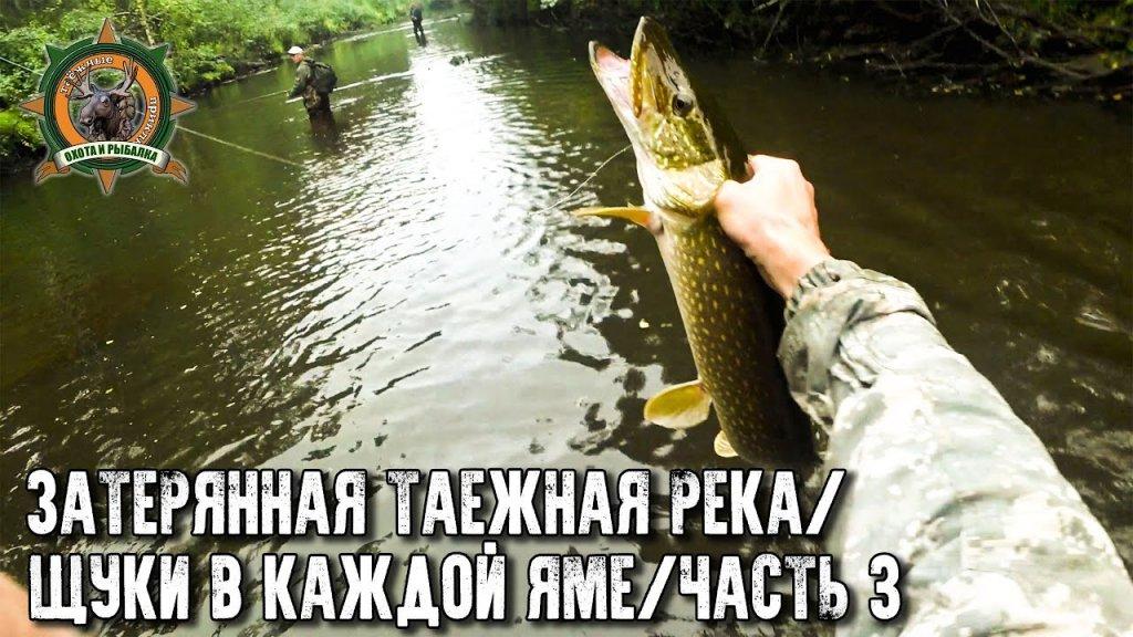В этой реке еще никто не ловил!/Щуки в каждой яме/Еле вынесли улов!/Часть 3