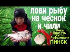 Ловим рыбу на чеснок и перец! Рыбалка на фидер в октябре