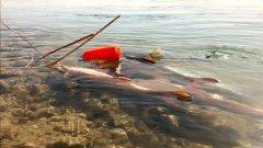 Дикая рыбалка, осень время трофеев с fisherman kz