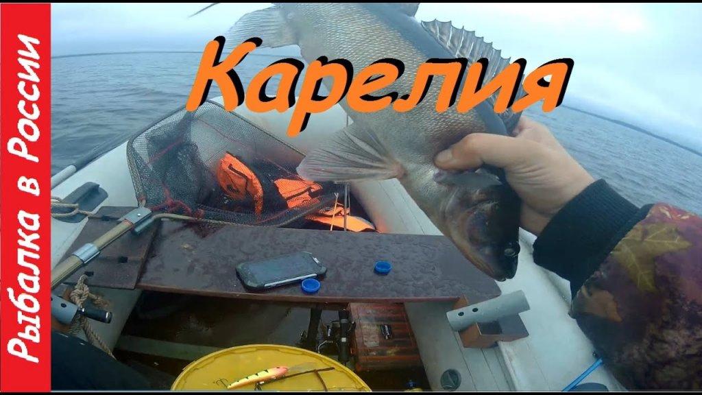 Рыбалка в Карелии.  Троллинг .  Ловля судака
