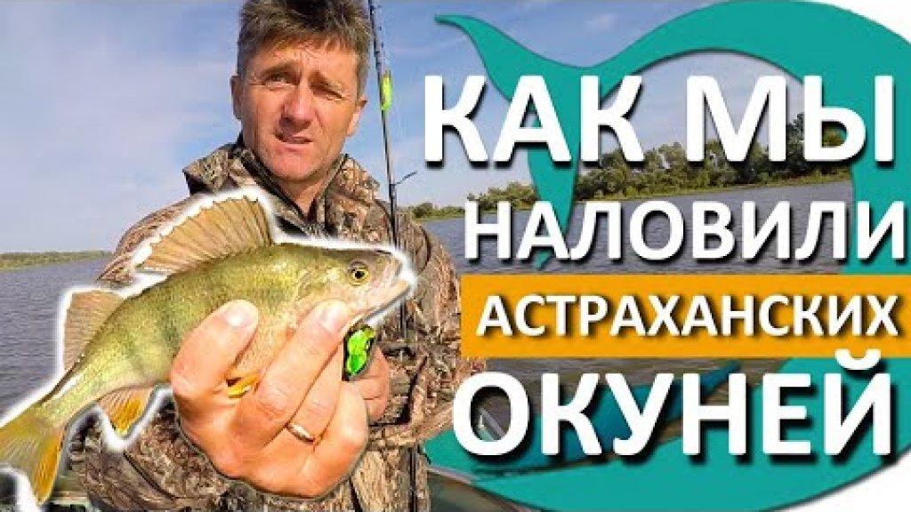 Рыбалка на ОКУНЯ. Астрахань 2020. Приманки на ОКУНЯ КОТОРЫЕ ЛОВЯТ. Ловим НА СИЛИКОН