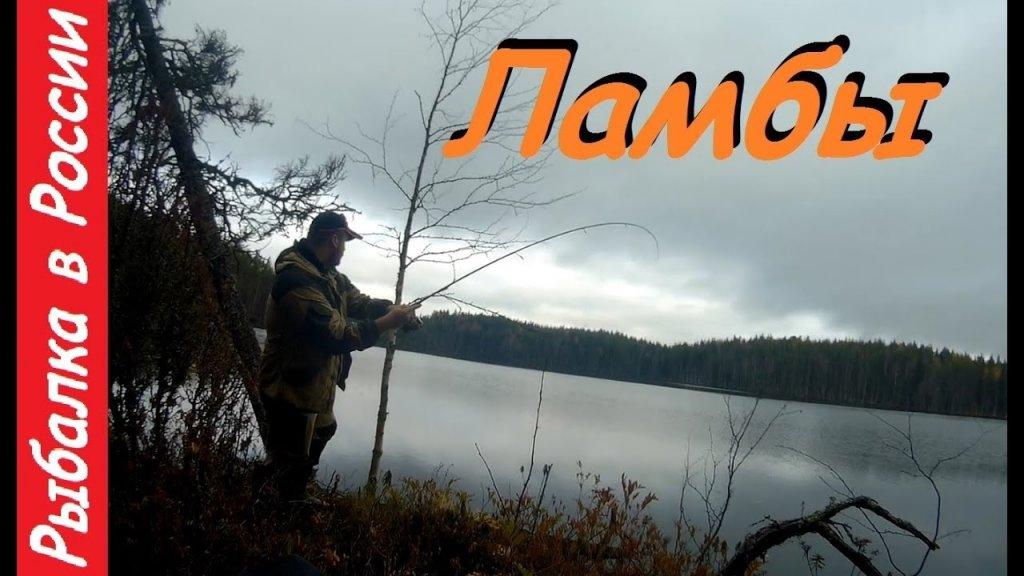 Рыбалка и отдых в Карелии.  Поход по Карельским ламбам.  Ловля  щуки + бонус