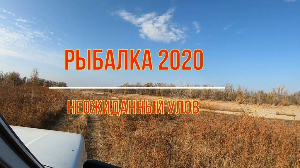 Рыбалка в Астраханской области.Вытащил удочку в клеточку. Неудачная ловля щуки. Рыбалка ноябрь 2020