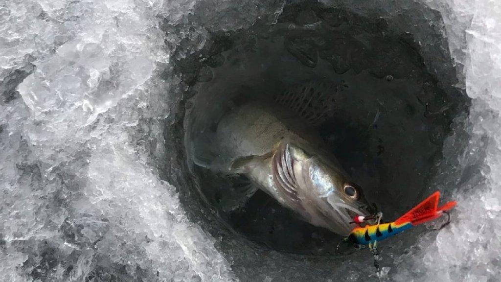 Открытие твёрдой воды.