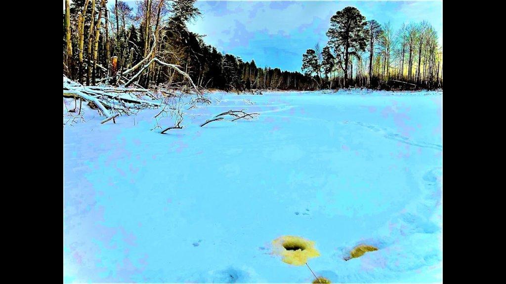 Первый лед на таёжном ручье. Они рвут лески. Зимняя рыбалка 2020-2021