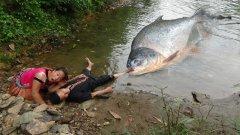 мотыль реакция зима мотыль рыбалка ловля на матыля крупный мотыль карась мотыль ловля на мотыль