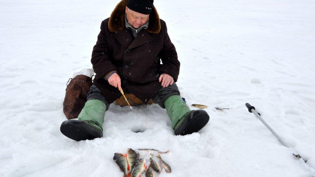 Исследование рыбацкого ящика ветерана рыбака.