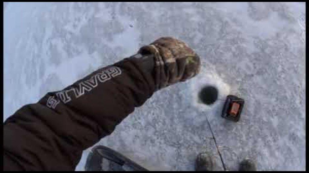 Рыбалка на судака. СНЕЖИКИ и СОБАКИ гоняют уже по 20 см льду. Видео отчёт 26.11.2020