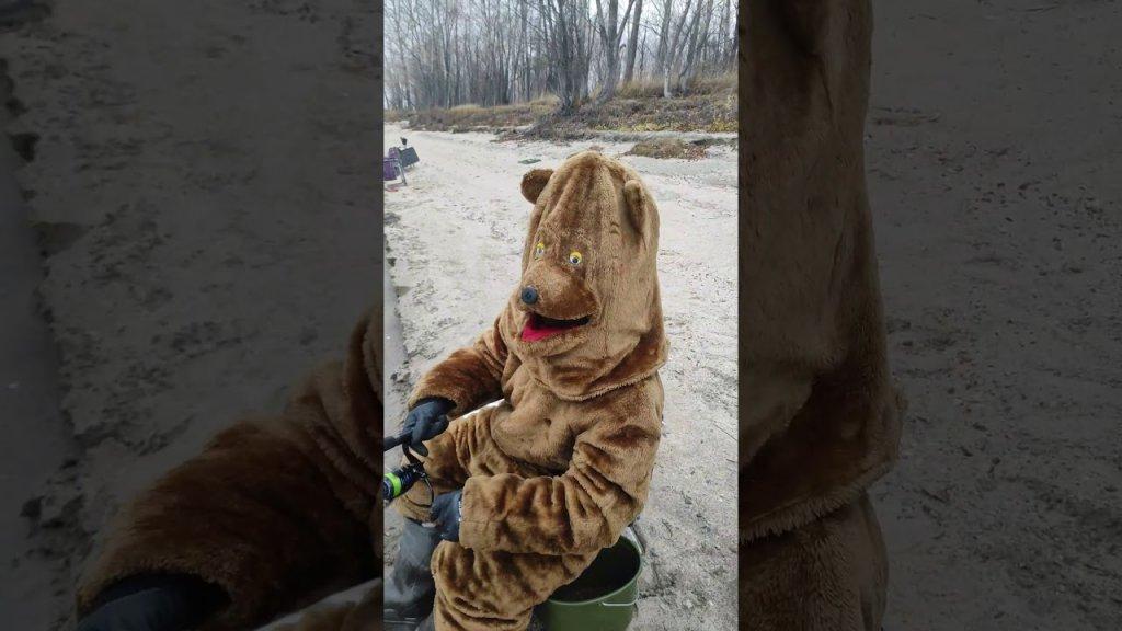 Встреча с медведем на рыбалке