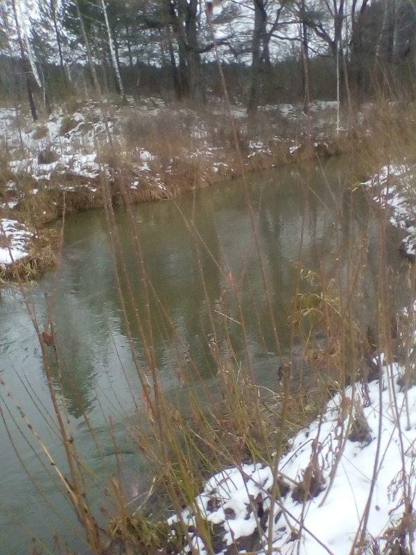 На этой речушке можно и не закрывать поплавочный сезон.