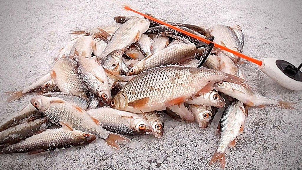 Зимняя рыбалка 2020 - 2021 и опасный лед! Ловля зимой на мормышку. Подводная съемка.