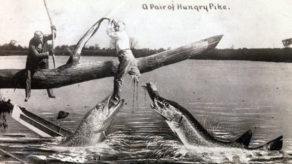 «Рыболовный фотошоп». 19 векъ. Фотоподъборка