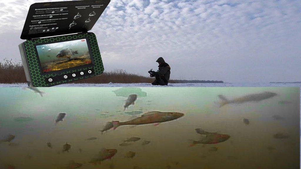 Подводная камера для рыбалки мурена. Обзор